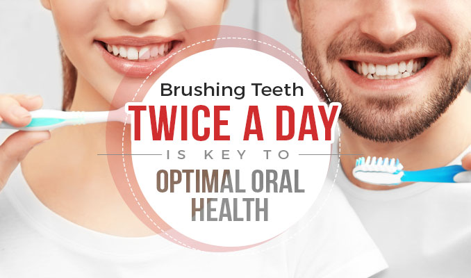 Brushing Teeth Twice a Day is Key to Optimal Oral Health